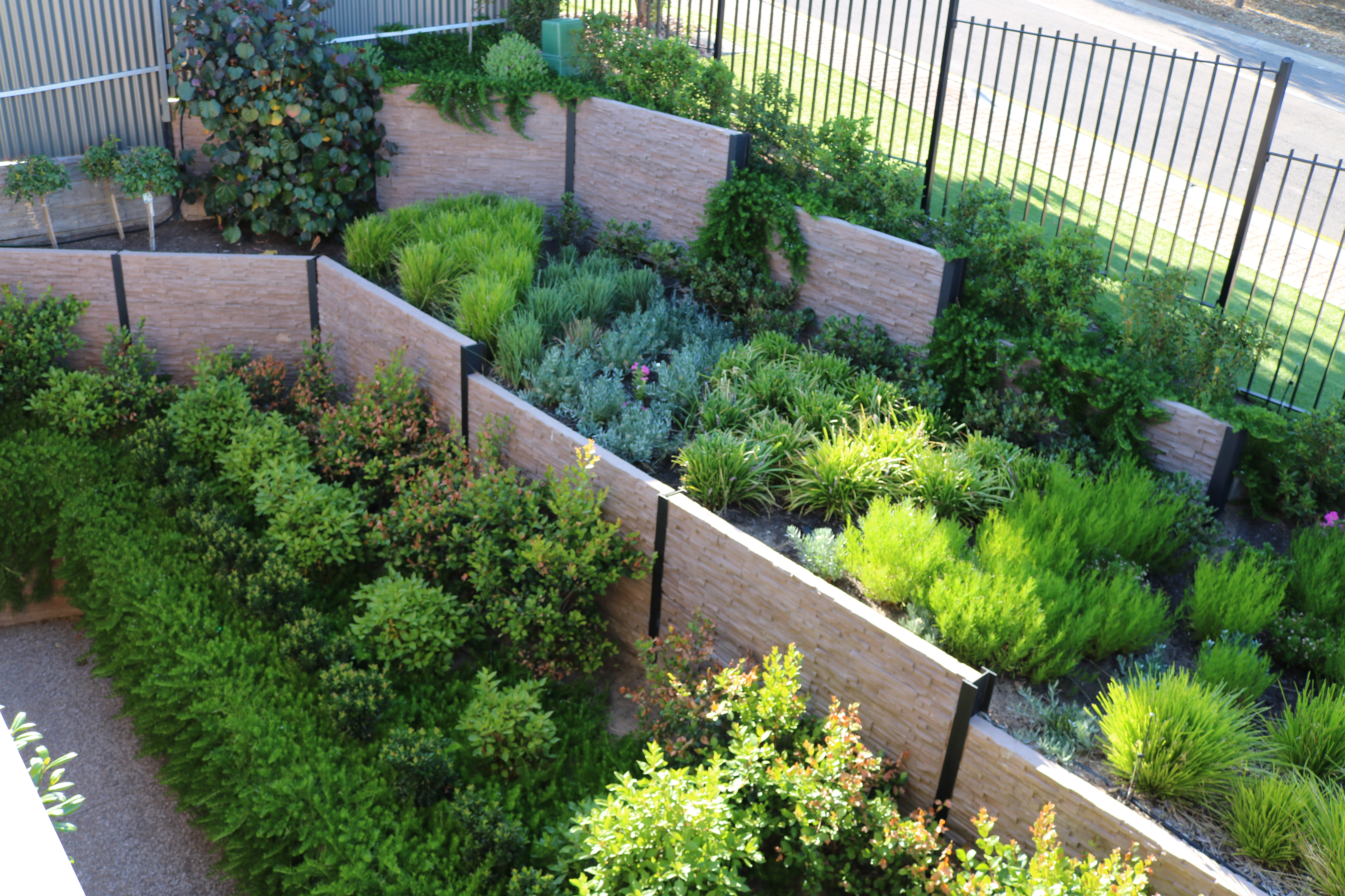 Image of: Garden Design Projects Adelaide Landscaping Garden Design Solutions